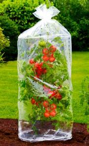 Tomatenhaube 2er-Set