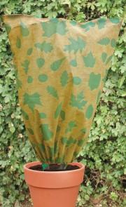 Pflanzenschutz Blätter