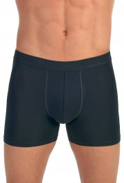 Ever New Shorts